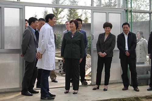 省人大常委会领导来潜开展《种子法》执法检查