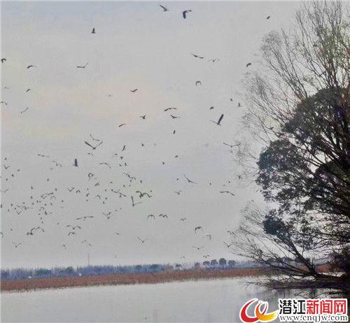 返湾湖:人退湖进4000亩