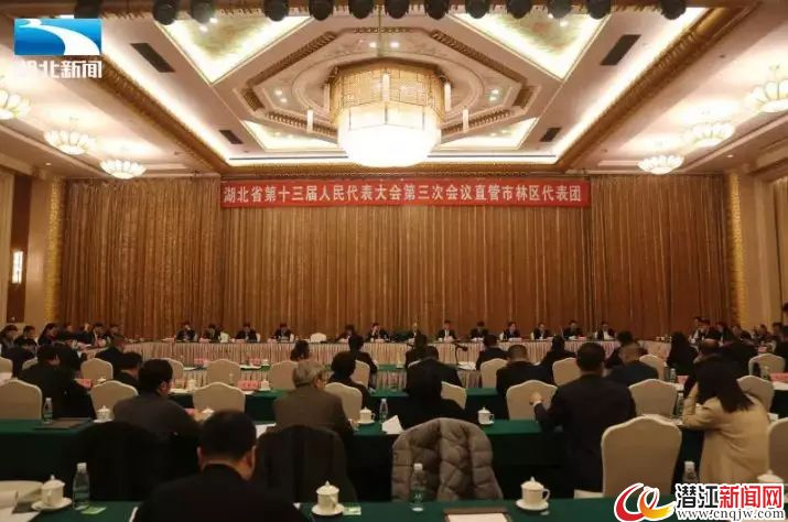 """吴祖云代表:建议将潜江确定为""""芯""""产业配套基地"""