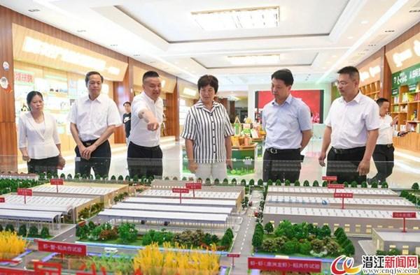 省人大常委会党组书记、常务副主任王玲来潜调研